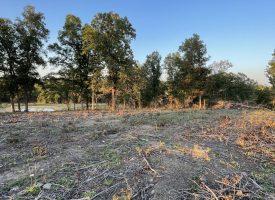 105+/-, Timber, Pasture, Fenced, Pond, Creek, Wiseman, AR, Izard County